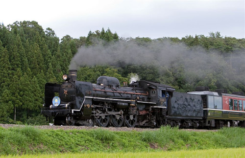 3t6a06071