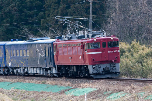 3t6a24431