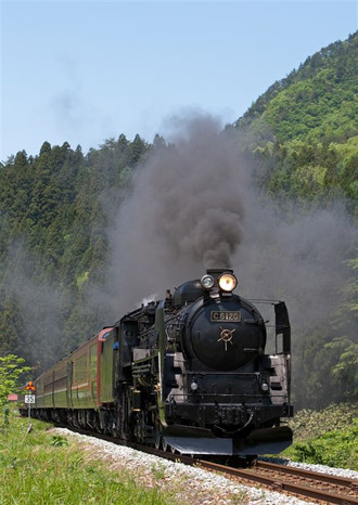 3t6a45561