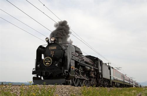 5a7e78801